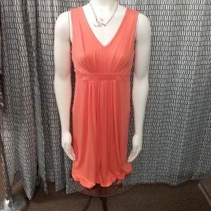 Ann Taylor dress NWT